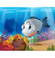 A piranha near the coral reefs vector image vector image