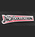 banner for new collection vector image