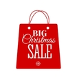 Christmas Sale inscription vector image vector image