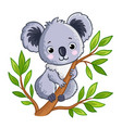 cute panda sitting on a tree vector image vector image