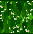 flowers lily valley summer seamless pattern vector image