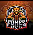 foxes sports mascot logo vector image