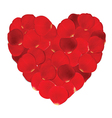 heart red petals and blank white paper vector image vector image