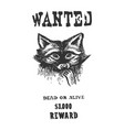 poster with raccoon engraving vector image