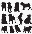 pug dog silhouettes vector image