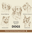 set hand drawing dogs 6 vector image vector image