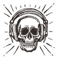 human skull listening music vector image