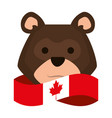 canadian flag with bear grizzly vector image vector image