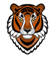 embroidery tiger head patch vector image