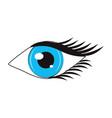 women eye cartoon vector image vector image