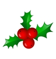 Christmas symbol holly berry vector image vector image