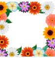 different colorful flowers frame vector image vector image