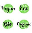 eco bio organic vegan lettering modern hand vector image
