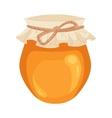 Jar of honey isolated on white background vector image