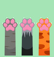 paws up different pets cats set design icon vector image vector image