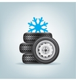 set of winter wheels vector image vector image