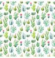watercolor cactus pattern vector image vector image