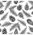 Pine cone and fir tree seamless pattern Botanical vector image