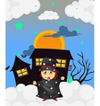 A witch near a haunted house vector image