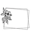 anemone floral botanical flowers with geometric vector image