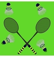 badminton rackets and shuttlecocks vector image