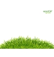 Green isolated grass hill on white background vector image