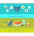 ICats 2 flat banners composition poster vector image vector image