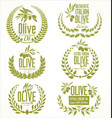 olive oil laurel wreath design elements vector image