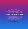 Retro summer vintage label on colorful background vector image