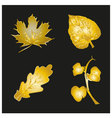 set of golden leaves vector image vector image