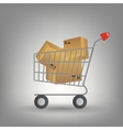shopping cart with boxes icon vector image