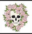 skull with pink flowers on a white background vector image vector image