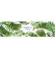 tropical leaves web banner vector image