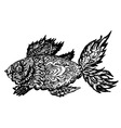 Fish Grunge Lineart vector image