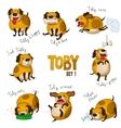 cute cartoon dog toset 1 vector image vector image