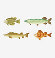 fish characters set cartoon vector image