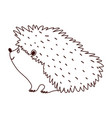 hedgehog animal fauna isolated design white vector image vector image