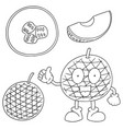set of melon vector image vector image