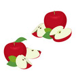 apple pieces set whole red apple fruit with slice vector image vector image
