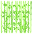 Background from bamboo vector image vector image