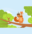 cute squirrel sitting on three branch with acorn vector image vector image