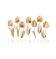 luxury abstract tulip flowers vector image