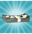The package of hundred-dollar bills wealth vector image vector image