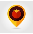 Tomato flat mapping pin icon vector image vector image