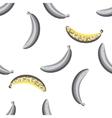Banana fruit seamless pattern vector image vector image