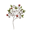 colorful decorative branch with flowers vector image vector image