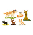 cute funny dogs different breads set adorable vector image vector image