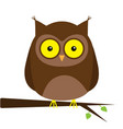owl on tree branch with leaf big yellow eyes vector image