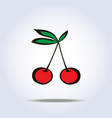 pair of cherries icon on gray vector image vector image