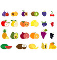 set different kinds fruits icons vector image vector image